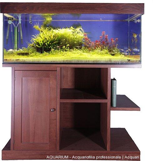 Realizzazione di acquari su misura roma aquarium for Acquario tartarughe vendita