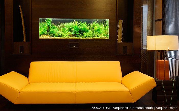 Realizzazione di acquari su misura roma aquarium for Acquari da arredamento