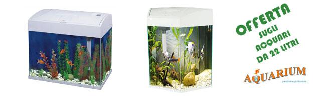 Offerta acquari da 22 litri forma esagonale o classica for Acquari nuovi in offerta